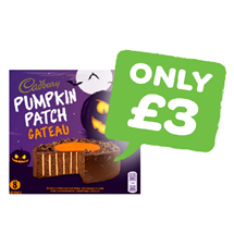 Cadbury Pumpkin Patch Gateau | Single